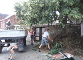 Spontanaktion: Baumschnitt an der Kirche beseitigt